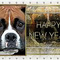 New Year - Golden Elegance Boxer by Renae Laughner