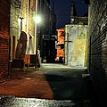 No Alley Cats Tonight by Jan Amiss Photography