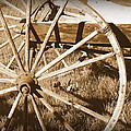 No Gas Needed Buggy Wheels by Cindy Wright