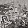 North Commercial Wharf Of Charleston by Everett