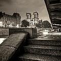 Notre-dame De Paris by Matthieu Godon