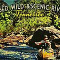 Obed Wild Scenic River Tennessee  by Flo Karp