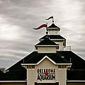 Oklahoma Aquarium by Toni Hopper