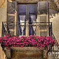Old Balcony With Red Flowers by Mats Silvan