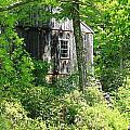 Old Barn by Sara Walsh