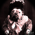 Old Lady English Bulldog Print by Tisha McGee