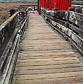 Old Red Shack At The End Of The Walkway by Wingsdomain Art and Photography