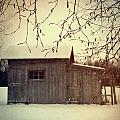Old Shed In Wintertime by Sandra Cunningham
