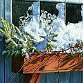 Old Window In Winter by Sandra Cunningham