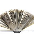 Open Book by Frank Tschakert
