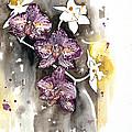 Orchid 13 Elena Yakubovich by Elena Yakubovich