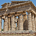 Paestum Temple by Paolo Modena