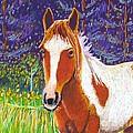 Paintchip by Harriet Peck Taylor