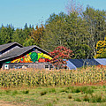 Painted Barn by Chris Anderson