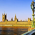 Palace Of Westminster From Bridge by Elena Elisseeva