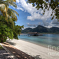 Paradise Island by Adrian Evans