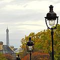 Paris Street by Elena Elisseeva