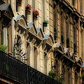 Paris Windows Print by Andrew Fare