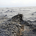 Part Of An Oil Slick In The Gulf by Stocktrek Images