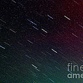 Perseid Meteor Shower Print by Thomas R Fletcher