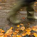 Person In Motion Walks Through Puddle by John Short