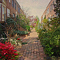 Philadelphia Courtyard - Symphony of Springtime Gardens Print by Mother Nature
