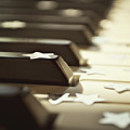 Piano Keys And Stars by Photo - Lyn Randle