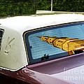 Pimpmobile by Joyce Weir