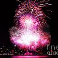 Pink Fireworks At Nyc by Archana Doddi