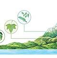 Plant Communities, Artwork Print by Gary Hincks