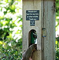 Please Don't Feed The Squirrels by Elizabeth Hart