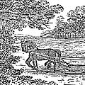 Ploughing, 19th Century by Granger