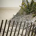 Point Pleasant Beach by Heather Applegate