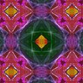 Polychromatic Arabesque by Gregory Scott