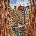 Port Of Camogli by Joana Kruse