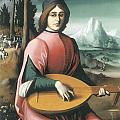 Portrait Of A Young Man With A Lute by Bachiacca