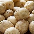 Potatoes by Elena Elisseeva