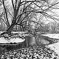 Poudre Black and White Print by James Steele
