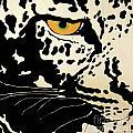 Preditor Or Prey by Boyd Art