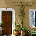 Provence Door 3 by Lainie Wrightson