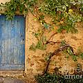 Provence Door 5 by Lainie Wrightson