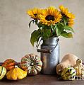 Pumpkins And Sunflowers by Nailia Schwarz