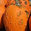 Pumpkinville by Luke Moore