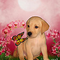 Puppy Innocence by Smilin Eyes  Treasures