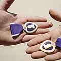 Purple Heart Recipients Display by Stocktrek Images