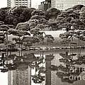 Quiet Moment In Tokyo by Carol Groenen