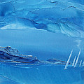 Racing Sailboats by Danita Cole