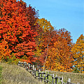 Rail Fence In Fall by Peg Runyan