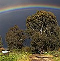 Rainbow by Photostock-israel