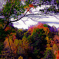 Rainbow Treetops by DigiArt Diaries by Vicky B Fuller